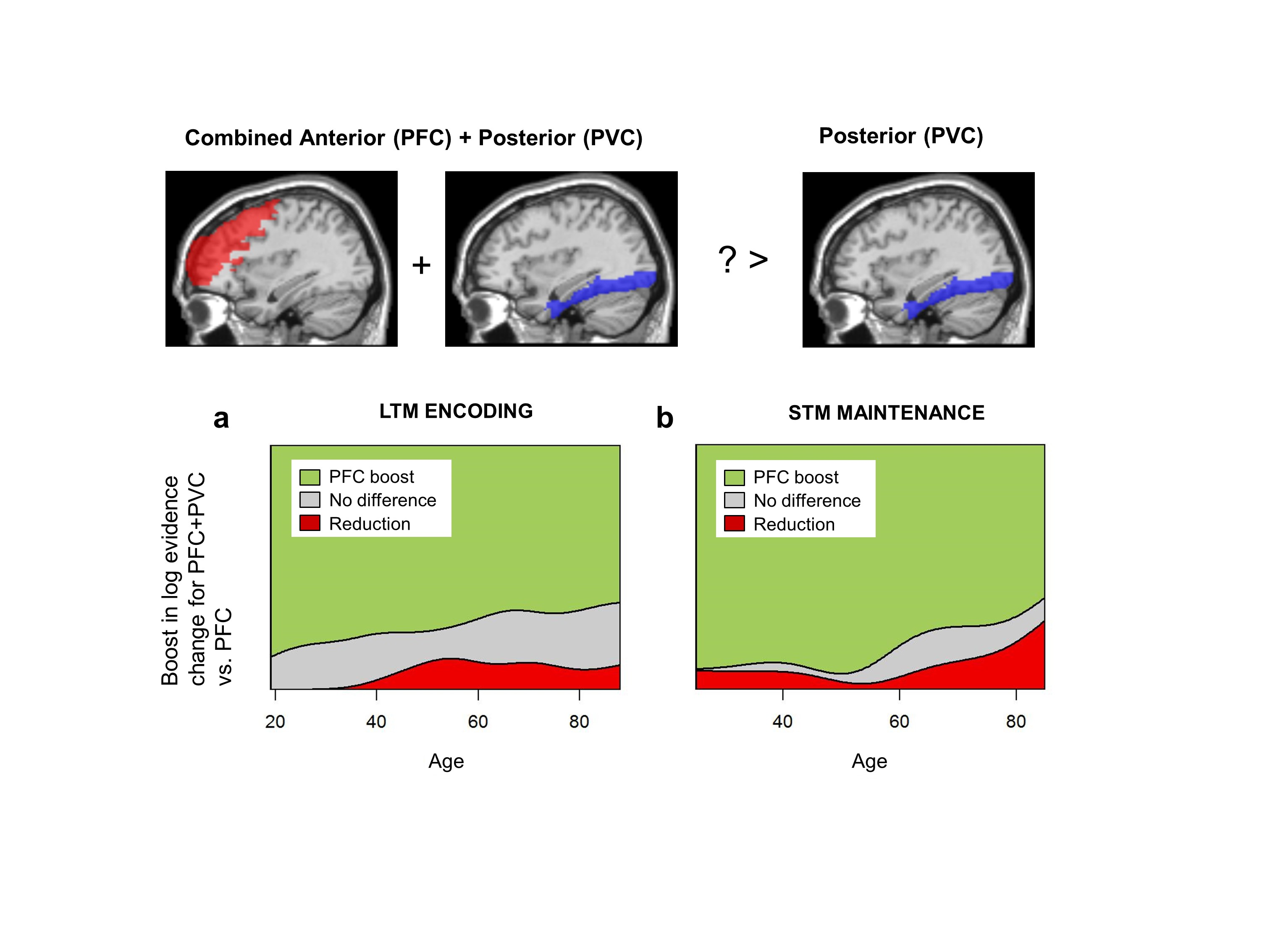 Why does brain activity increase in old age?